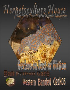Herpetoculture-House-Issue Vol. 1 Issue 1